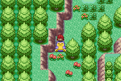 Pokemon Eruption (beta 2.1) - MOVE IT TUBBY!! - User Screenshot